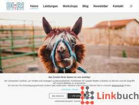 Di.Ri Social Media - Social Media Agentur aus Heidelberg